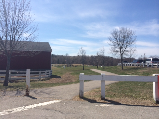 Concord Road Park