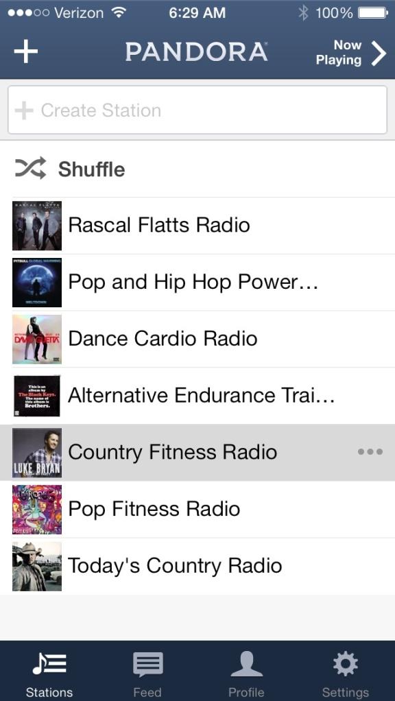 Pandora-workout-stations